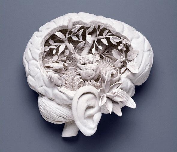 brain and mind stuff