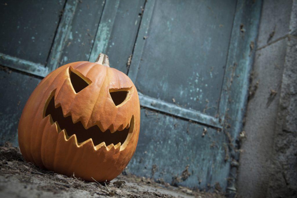 pumpkin-1024x682.jpg