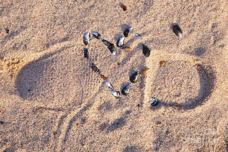 trampled-heart-on-a-beach-kathleen-smith.jpg