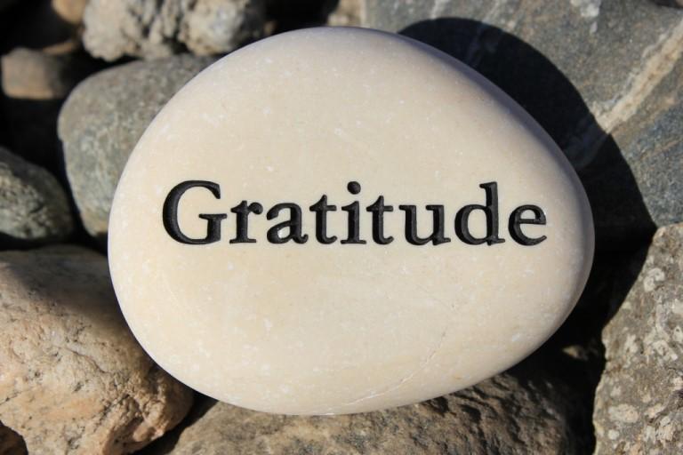 bigstock-Gratitude-50861279-1024x683.jpg