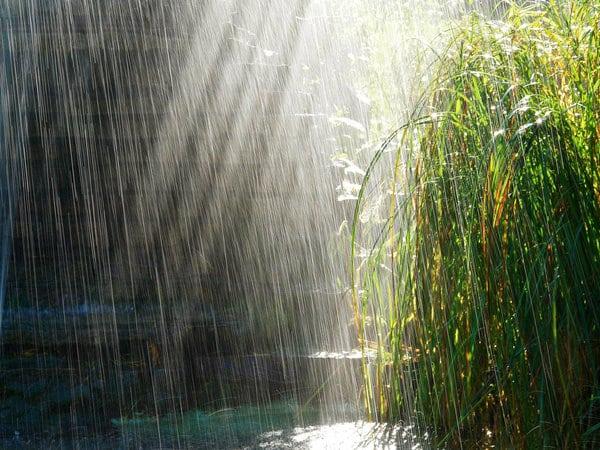 raininthesun