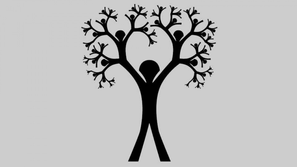 family-tree-and-lineage.jpg